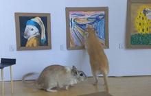 """""""Sen"""" có tâm nhất mùa Covid-19: thiết kế hẳn bảo tàng tranh mini cho chuột cưng, có đủ """"Mona Lisa"""", """"Tiếng Thét"""" và nhiều danh tác khác"""