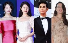"""10 sự thật ít ai biết về """"Quả cầu vàng xứ Hàn"""" Baeksang: Kim Soo Hyun lập kỉ lục nhưng vẫn kém xa đàn anh Lee Byung Hun ở một khoản"""