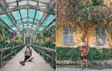 """Thảo Cầm Viên – địa điểm đang dần bị lãng quên bởi giới trẻ Sài Gòn hiện đại: Nếu không """"giải cứu"""" kịp thời, có lẽ nơi này sẽ mãi là ký ức!"""