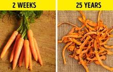 Chỉ với một mẹo, những loại đồ ăn này có thể có hạn sử dụng từ hàng chục năm cho tới... vĩnh cửu: Làm thế nào vậy?