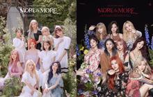 """TWICE tung teaser """"xinh hơn hoa"""" nhưng Knet không muốn khen ngợi, còn quen thói """"khẩu nghiệp"""": """"Cái thứ gì đây, JYP chán TWICE rồi à?"""""""
