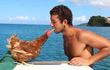 Gã trai ôm gà mái đi du lịch vòng quanh thế giới bằng đường biển