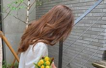 Theo các BTV làm đẹp, đây là 5 loại thuốc nhuộm tóc bình dân chất lượng, toàn màu tôn da tại tự nhuộm được tại nhà