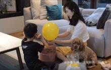Vợ chủ tịch Taobao lần đầu tiên đưa cả 2 con vào vlog riêng và liên tục khoe nhẫn ở ngón áp út ẩn ý tình trạng của vợ chồng