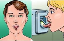 """8 sự thật về chiếc lưỡi khiến bạn có cảm giác như đã nhận phải """"một cú lừa"""" bấy lâu nay: Nó có quá nhiều điều bất ngờ"""