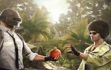 """PUBG Mobile: Nếu chán vùng đất băng giá, hãy """"xách balo lên và đi"""" thám hiểm rừng rậm nhiệt đới mới!"""