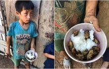 Xót xa bữa cơm của những đứa trẻ vùng cao Đắk Lắk: Chỉ có cơm nguội trộn với ve sầu