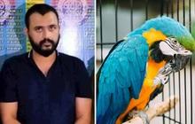 Bé gái 7 tuổi đi làm giúp việc chết tức tưởi dưới tay ông bà chủ chỉ vì để bay mất con vẹt đắt tiền