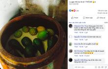 """Một mẹo """"phù phép"""" trái cây bằng thùng gạo từ xưa đến nay vẫn được áp dụng: nhiều người sẽ thấy bồi hồi khi nhìn vào bức ảnh này"""