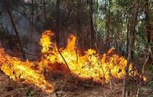 Hơn 300 người đội nắng nóng cố gắng ngăn 'thần lửa nuốt rừng'
