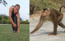 """""""Người khỉ"""" đi bằng 4 chân, đu cây thuần thục suốt 3 thập kỉ khiến không ít người hiếu kỳ, tiết lộ cảm hứng đến từ khi mới 20 tuổi"""