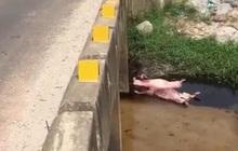 Mất tích sau lễ tổng kết năm học, thi thể nữ sinh lớp 11 được tìm thấy dưới mương nước