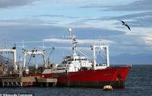 57 thủy thủ Argentina mắc Covid-19 bí ẩn sau 35 ngày trên biển