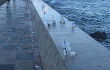 Nhức mắt trước cảnh Bãi Trước Vũng Tàu biến thành… bãi rác của du khách, ly nhựa và đồ ăn nằm vương vãi khắp nơi