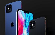 iPhone mới từ nay về sau sẽ có hộp mỏng hơn do không còn tai nghe và củ sạc