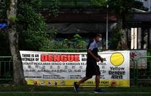Singapore vượt ngưỡng hơn 14.000 người bị sốt xuất huyết