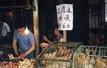 Trung Quốc từng bước xóa bỏ giao dịch, giết mổ gia cầm sống tại các chợ