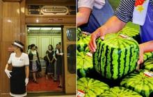 """Nước Nhật """"diệu kỳ"""" đến cỡ nào: Đây chính là những điều khiến du khách lần đầu đặt chân đến phải há hốc mồm ngạc nhiên (Phần 3)"""
