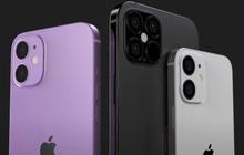 Apple có thể sẽ không trang bị cho iPhone 12 màn hình cực hot trên nhiều smartphone cao cấp khác