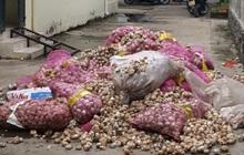 Đồng Tháp: Vứt hàng trăm bao tỏi có nhãn Trung Quốc xuống sông