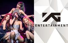 Góc choáng váng: YG tăng 122 tỷ Won vốn hóa chỉ trong 10 ngày sau khi BLACKPINK comeback, đúng là thời tới cản không kịp!