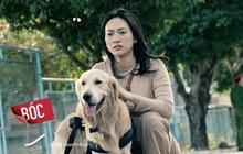 7 sự thật có thể bạn chưa biết về Bằng Chứng Vô Hình: Cả Châu Á có đến 4 phiên bản remake