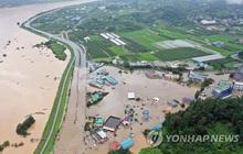 Bão Jangmi đổ bộ Hàn Quốc, gây gián đoạn dịch vụ hàng không và đường biển