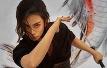"""Gil Lê chính thức mở fanship toàn cầu, Shadow còn chờ đợi gì nữa mà không thu xếp hành lí để dọn vào """"nhà chung""""?"""
