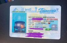 Hí hửng đi lấy bằng lái xe mới, người phụ nữ ngớ người khi phát hiện trong ảnh thẻ chỉ có một chiếc ghế trống không