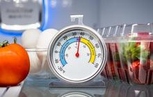 Tủ lạnh là nơi bảo quản thức ăn tốt nhất nhưng thực phẩm có thể bảo quản được bao lâu trong tủ lạnh khi mất điện?