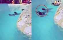 """Đoạn clip quay 2 chú hải cẩu bơi quanh hồ nhưng món đồ trên cổ chúng lại gây chú ý và khiến hàng nghìn dân mạng """"nóng máu"""""""