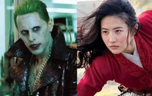 """Rộ tin Lưu Diệc Phi bắt tay """"Joker soái ca"""" ở phim mới, Disney làm ơn xoá biệt danh """"thuốc độc phòng vé"""" của tỷ tỷ giùm!"""
