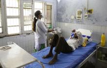 Hơn 100 người Ấn Độ tử vong vì uống rượu giả