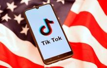 Nếu Microsoft mua lại TikTok, Mỹ sẽ là ông chủ tuyệt đối của tất cả các mạng xã hội phổ biến nhất toàn cầu