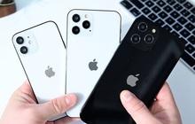 Apple sẽ bán iPhone 12 theo hai đợt, đợt đầu chỉ bán model 6,1 inch?