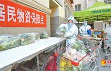 Tân Cương (Trung Quốc) thêm gần 650 ca Covid-19 trong cộng đồng