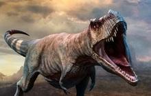 Lần đầu tiên phát hiện khủng long bị ung thư