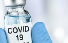 Vaccine của Novavax (Mỹ) tạo được phản ứng miễn dịch với Covid-19