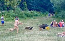 """Câu chuyện phía sau hình ảnh người đàn ông """"tồng ngồng"""" đuổi nhau với lợn lòi quanh công viên"""