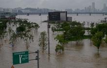 Mưa lũ nghiêm trọng tại Hàn Quốc, ít nhất 21 người thiệt mạng
