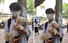 """Chú chó Poodle đến đón cậu chủ đi thi về gây """"náo loạn"""" cổng trường"""