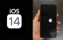 Cảnh báo: iOS 14 đang gặp lỗi nghiêm trọng, update xong bị... lệch luôn quả táo
