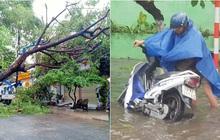 Đà Nẵng trong bão số 5: Mưa to kèm sấm chớp, nhiều tuyến đường ngập nước, cây đổ, cột điện gãy