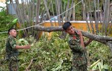 Quân đội Huế khẩn trương dọn dẹp, khắc phục sự cố sau bão số 5 để học sinh sớm trở lại lớp học