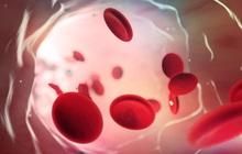Nhóm máu duy nhất có thể tự động chống lại căn bệnh giết nửa triệu người mỗi năm, và cuối cùng khoa học cũng hiểu lý do tại sao