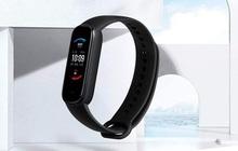 Xiaomi ra mắt Amazfit Band 5: Đo Oxy trong máu như Apple Watch Series 6, rẻ gấp 6 lần