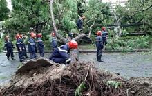 Thêm 2 nạn nhân tại Thừa Thiên - Huế tử vong vì bão số 5