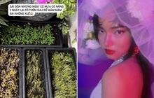 """Cô dâu Châu Bùi khoe """"kho báu sau vườn"""" khiến nhiều người phải trầm trồ, ai kia trở thành chú rể chắc là mừng lắm!"""