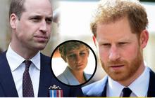 """Dùng hình ảnh của mẹ quá cố để """"kiếm lợi"""", Hoàng tử Harry châm ngòi cho trận chiến mới với anh trai William, Hoàng gia Anh cũng phải tức giận?"""