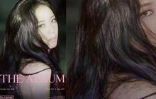 """Jisoo """"đánh úp"""" ảnh teaser thứ 2: Fan đã soi ra màu tóc tím, ánh nhìn xa xăm báo hiệu concept """"bad girl sầu bi""""?"""